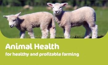 animal_health